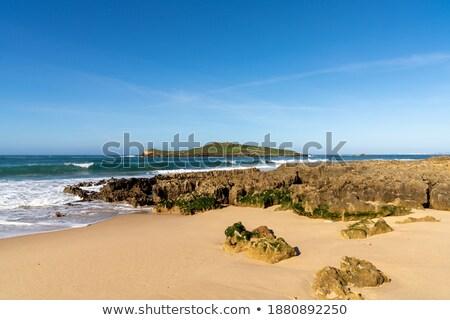 Beach of Pessegueiro island Stock photo © inaquim