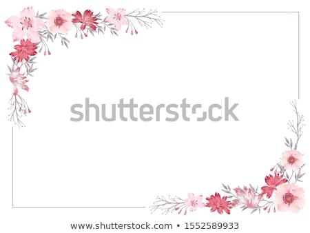 Bloem frame wolk ruimte tekst hemel Stockfoto © marimorena