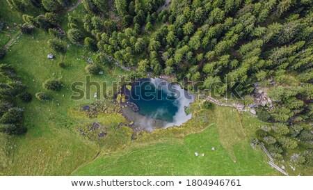 Covel Lake - Trentino, Italy Stock photo © Antonio-S