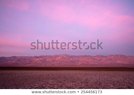 дороги · хвоя · Freeway · 40 · Калифорния · пустыне - Сток-фото © cboswell