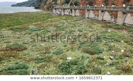 Dam lake Hartbeespoortdam Stock photo © intsys