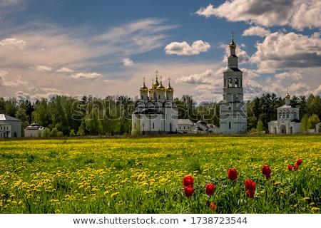 Ortodoks kilise Hristiyan gökyüzü kar ibadet Stok fotoğraf © simazoran