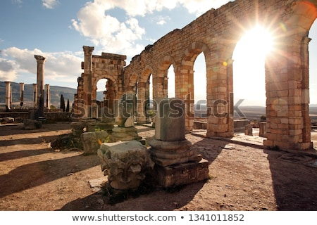 Volubilis Stock photo © kentoh