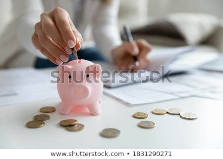 Budget bericht schrijven mannelijke hand business Stockfoto © fuzzbones0