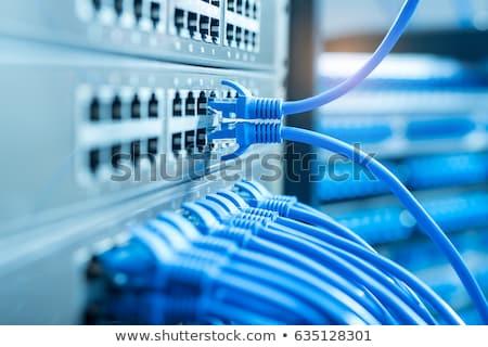 router · fili · primo · piano · blu · computer · internet - foto d'archivio © oleksandro