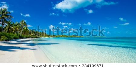 trópusi · tengerpart · hegyek · tájkép · trópusi · sziget · gyönyörű - stock fotó © master1305