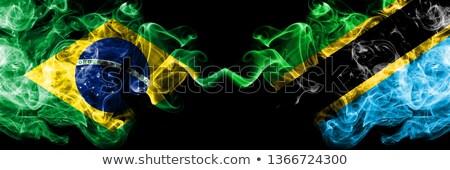 Brasil Tanzânia bandeiras quebra-cabeça isolado branco Foto stock © Istanbul2009