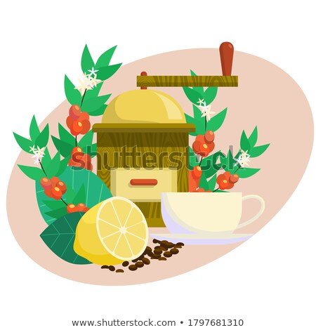 coffee grinder with coffeecup and beans stock photo © klinker