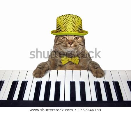 фортепиано клавиатура соломенной шляпе подробность музыку звук Сток-фото © CaptureLight