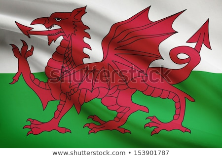 Welsh flag blowing in the wind. Stock photo © latent