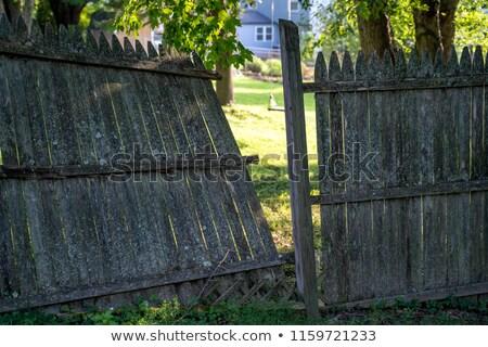 Fából készült udvar kerítés fényes nyár nap Stock fotó © stevanovicigor