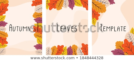 autumn card of colored leafs eps 8 stock photo © beholdereye
