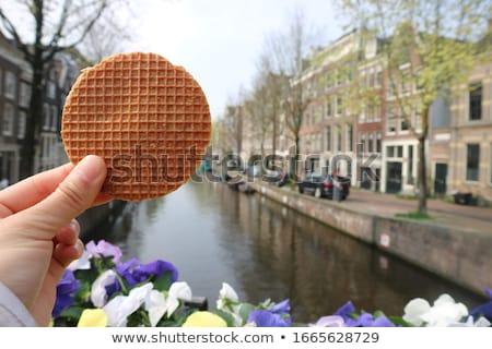 Holland izolált fehér étel háttér csoport Stock fotó © RuslanOmega
