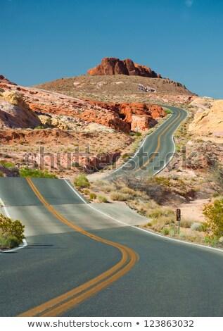 Vide route désert terres illustration paysage Photo stock © bluering