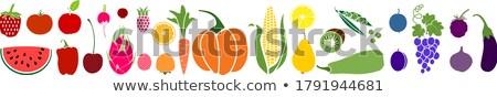 flat style illustration of corn.  Stock photo © curiosity