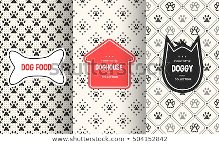Dog pet with bone at doghouse Stock photo © bluering