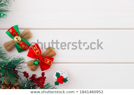 Bone for dog canine snack. Gift with red ribbon bow Stock photo © orensila