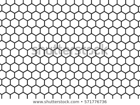 honingraat · honing · kam · landbouwer · hand · bee - stockfoto © photo25th