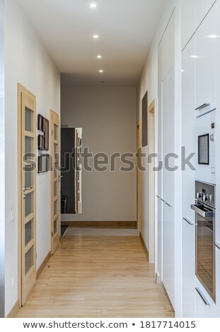 Hallway interior with door. Stock photo © biv