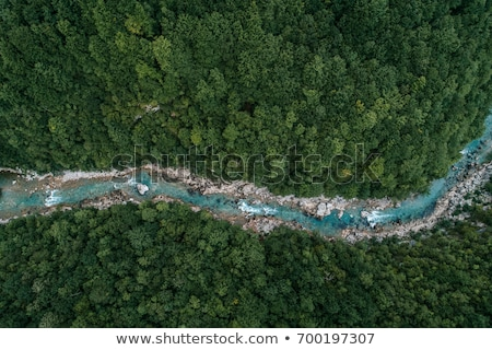Aerial view on river Stock photo © Givaga