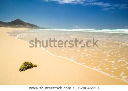 пляж Канарские острова Испания сумерки небе закат Сток-фото © kasto