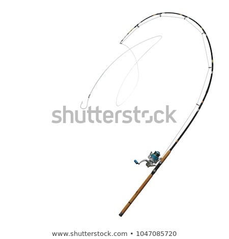 Icon of curved fishing tackle Stock photo © angelp