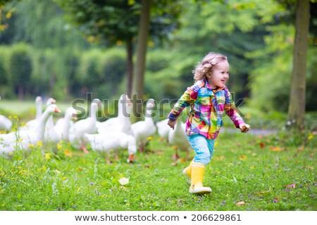 cute little girl feeding a wild bird in a city park stock photo © konradbak