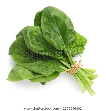 Espinafre folha metal prato fresco comida Foto stock © tycoon
