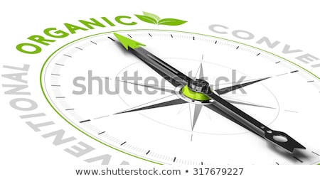 Kompas witte bio magnetisch naald wijzend Stockfoto © make