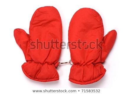 Ujjatlan kesztyűk ősz tél fehér kezek hó Stock fotó © cookelma