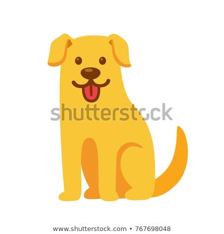 happy yellow dog cartoon animal character Stock photo © izakowski