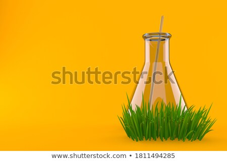 Empty Flask and with Green Chemical Substance Stock photo © robuart