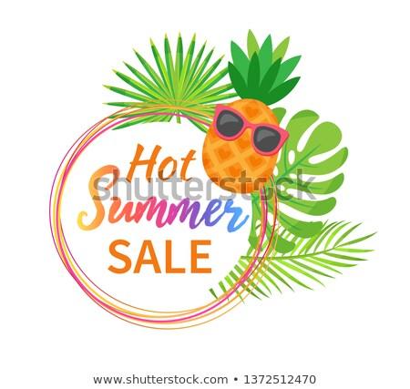 Ananász szemüveg zöld páfrány árengedmény vektor Stock fotó © robuart