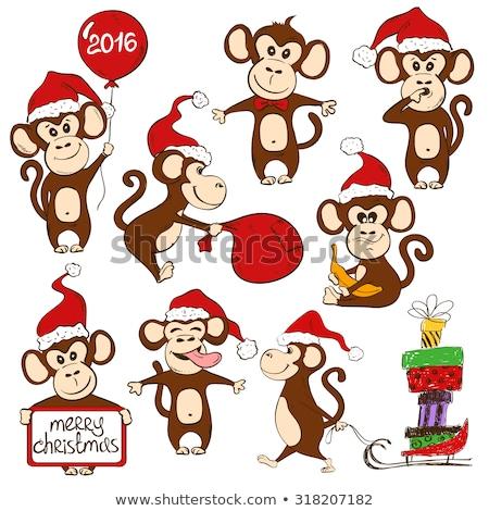 Hoed christmas aap dier Stockfoto © Krisdog