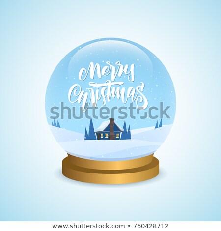 Sneeuw wereldbol huis souvenir vintage vector Stockfoto © pikepicture