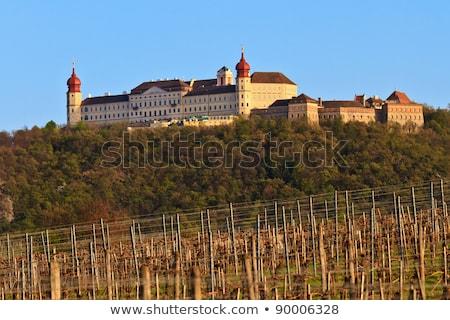 Abdij Oostenrijk wijngaard hemel zomer Stockfoto © borisb17