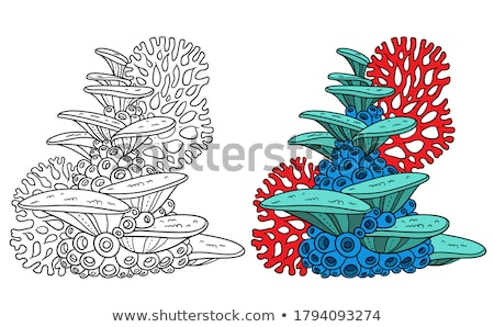 Colored Sponges Stock photo © Freelancer