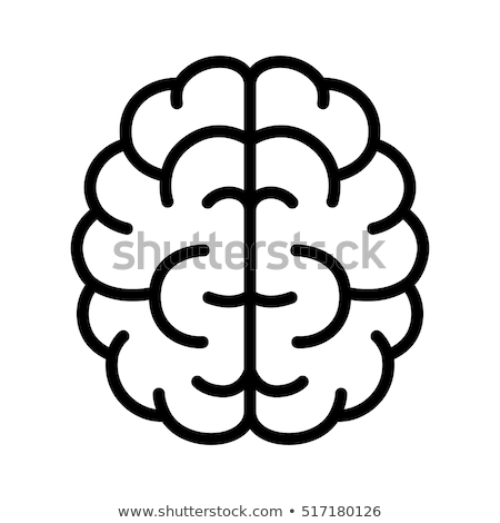 human brain icon vector outline illustration Stock photo © pikepicture
