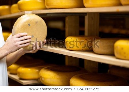 Altern Käse Foto Hand Hintergrund Stock foto © olira