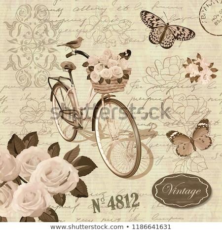 Flores borboleta aves selos Austrália escritório Foto stock © Vividrange