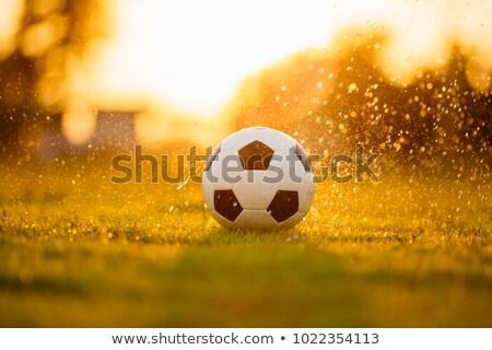 Voetbal regen hemel gras natuur Stockfoto © Raduntsev