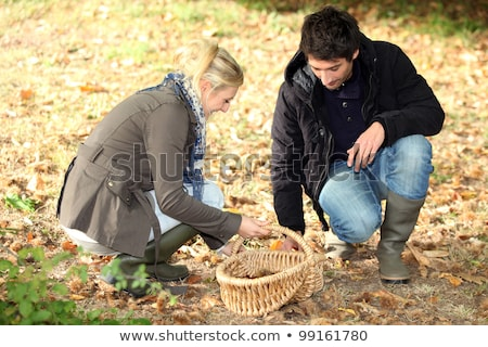 Couple collecting chestnuts Stock photo © photography33