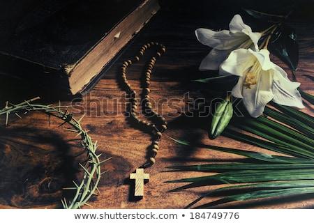 Stok fotoğraf: Paskalya · İncil · tespih · avuç · içi · görüntü · kitap