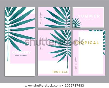 ピンク 文房具 セット 要素 ストックフォト © malexandric