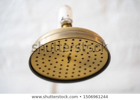 zuhany · fúvóka · cseppek · fürdőszoba · zuhan · otthon - stock fotó © bbbar