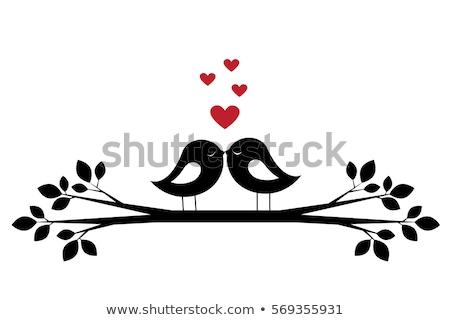 aves · ramo · primavera · natureza · coração - foto stock © creative_stock