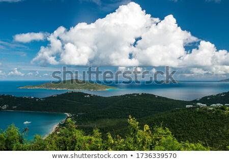 パノラマ · カリビアン · 島 · バージン諸島 · 森林 · 太陽 - ストックフォト © backyardproductions