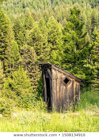 Old Outhouse in the Woods Stock photo © ArenaCreative