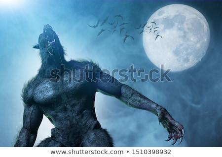 Kurt adam görüntü kroki kırmızı siyah karikatür Stok fotoğraf © cteconsulting