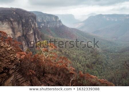 égő völgy kék hegyek Ausztrália egyenetlen Stock fotó © lovleah